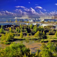 Озеро. :: Анатолий