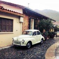 Первый сентябрьский дождь в кипрских горах :: Мария Шатрова