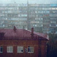 Первый осенний дождь :: Krasnodar Pictures