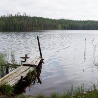 Мостки :: Андрей Зайцев