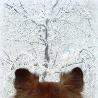 Зима :: Евгения Х
