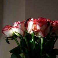 Букет любимой женщине II :: san05 -  Александр Савицкий