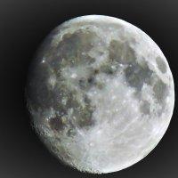 Луна :: Евгения Баранова