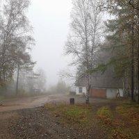 Утренний туман :: Алексей Некрасов