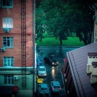 Дождливо по-краснодарски :: Krasnodar Pictures