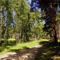 8 августа . :: Мила Бовкун