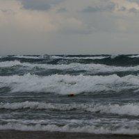 Чёрное Море - Шторм :: Олег Савин