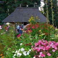 Loki Schmidt Garten Hamburg :: Nina Yudicheva
