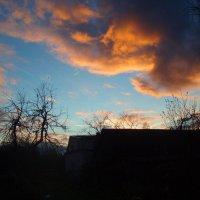 Vakaras sode / Evening in the garden :: silvestras gaiziunas gaiziunas