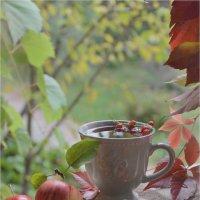 Осень в моём саду... :: Tatyana Pletyak
