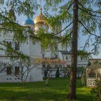 Весной в Новоспасском :: Александра