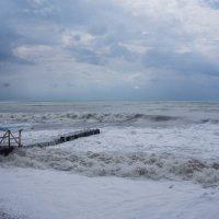 шторм :: Оксана Горбунова