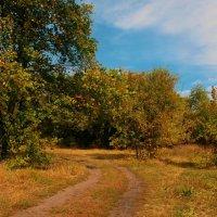 Осенняя дорожка :: Анастасия