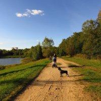 Пейзаж, но не только :: Андрей Лукьянов