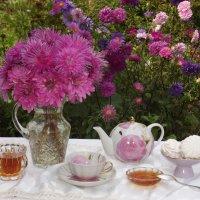 Чаепитие в саду. :: нина