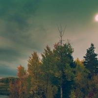 Перед грозой :: Андрей Кузнецов