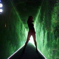 Флиртуальный мир :: Alex Sash