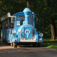 Паровозик из парка :: Владимир Гилясев