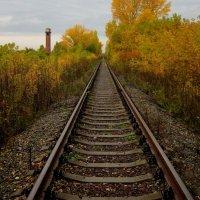 Осень :: Дмитрий Арсеньев