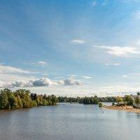 На озере Разлив (4) :: Виталий