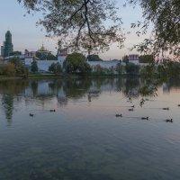 Новодевичий монастырь на закате :: Александра