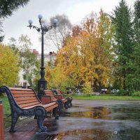 Осенний  парк... :: Анна Приходько