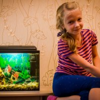 Мои любимые рыбки! :: Валерий Гудков