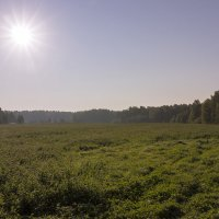 Деревенский пейзаж :: Нина Кутина