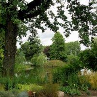 В Ботаническом саду Тартуского университета :: Елена Павлова (Смолова)