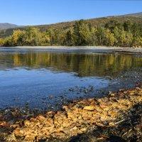 на берегу озера в Хибинах :: Георгий