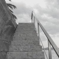 ступени. :: ЕВГЕНИЯ
