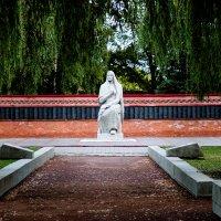 Воздвиженское кладбище г.Тамбов :: Павел C