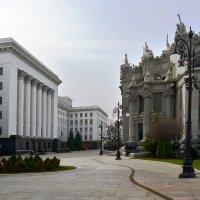 Дом с химерами и резиденция президента Украины :: Тамара Бедай