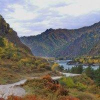 осень в Зачемалье :: nataly-teplyakov