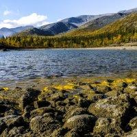 на крае озера в Хибинах :: Георгий