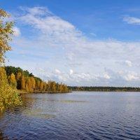 Озеро Яково в сентябре :: Галина Кан