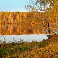 Рисует осень солнечным лучом... :: Нэля Лысенко