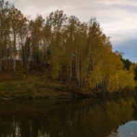 Тихие воды :: Дмитрий Костоусов