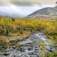 горная речка в Хибинах :: Георгий