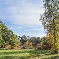 Уголок старого парка (7) :: Виталий