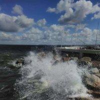 Балтика :: Galina Belugina