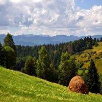 Карпати - осінь :: Степан Карачко