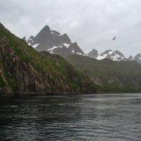Северная Норвегия. Лофотенские острова. Тролльфьорд. :: Надежда Лаптева