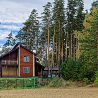 Домик в лесу :: Дмитрий Конев