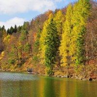 Осень Осень .... :: Николай Танаев