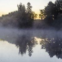 Утро :: Андрей Щетинин