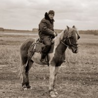 На коне :: Светлана Рябова-Шатунова