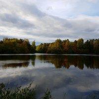 Зеркальное отражение осени в воде озера... :: Ольга Русанова (olg-rusanowa2010)