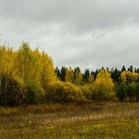 Осенний минор :: Валентин Котляров