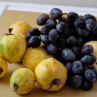Гуайава и виноград :: Александр Деревяшкин